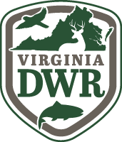 Oh No! Chronic Wasting Disease Detected in Another Virginia County - a Spreading Menace