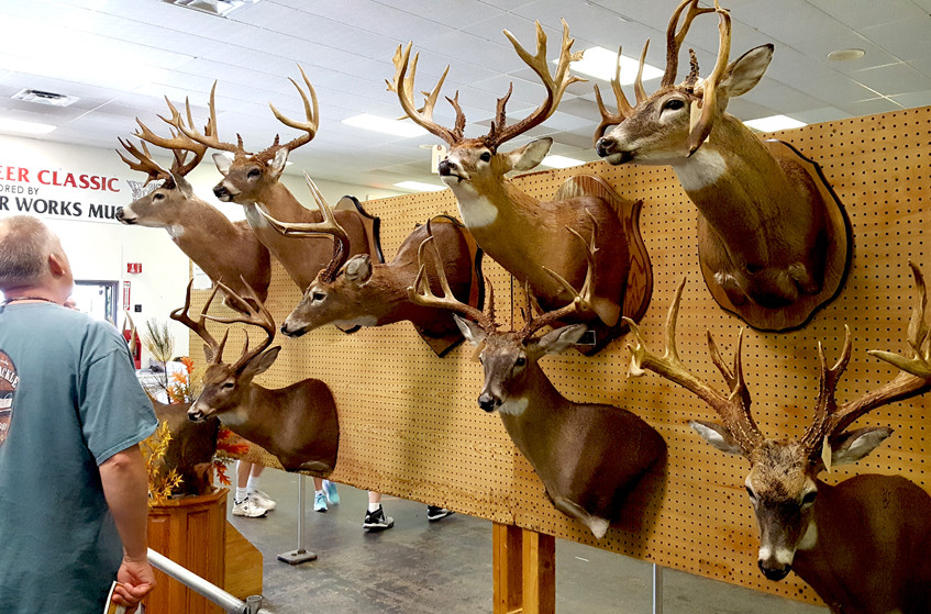 Big antlers certainly impress but the trophy experience goes beyond