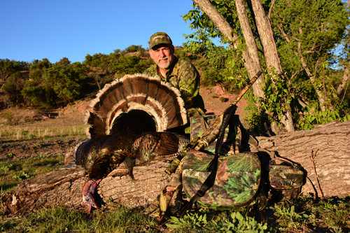 Gould's turkey hunting Sonoroa Mexico Rancho Mababi with Mossberg