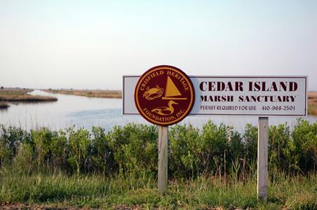 OR-cedar island sanctuary