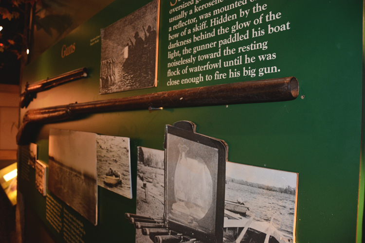 Ward Museum-Market Gun Display