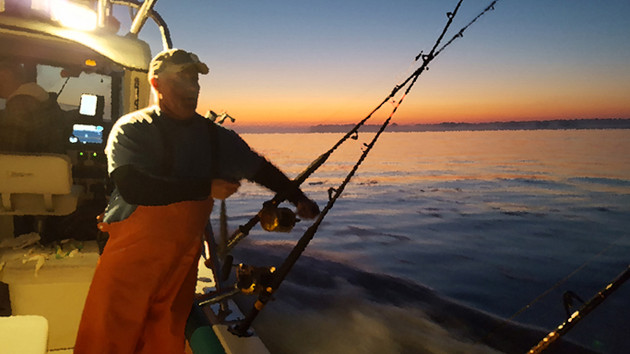 Rockfish a Sportfish Staple and Still Rolling in the Potomac River and Chesapeake Bay