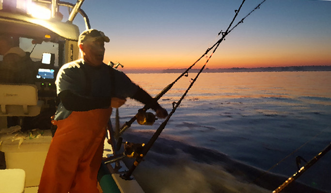 Potomac River striped bass rockfish fishing winter