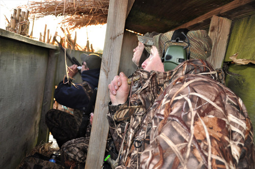 Maryland Eastern Shore duck hunting