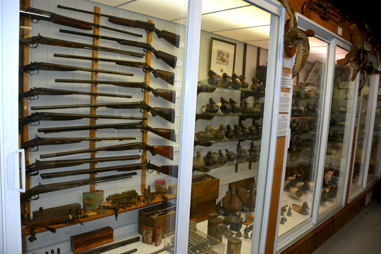 Upper Bay Museum - Decoys and Firearms