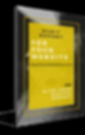 Website Audit eBook Cover LATEST.png
