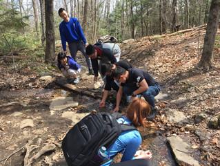 Hiking at Wachusett Mountain