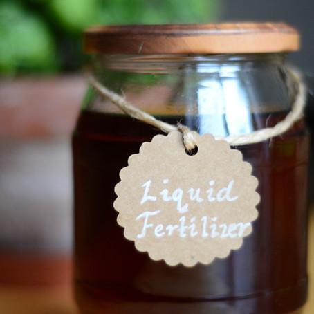 Make Your Own Liquid Fertilizer