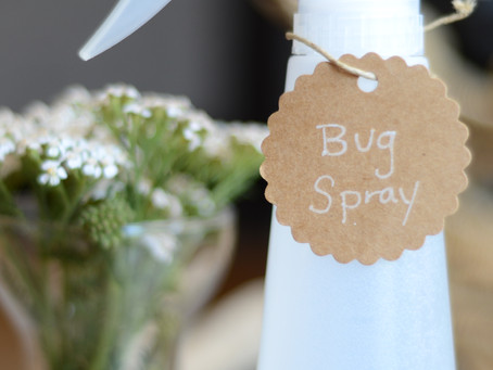 All-Natural Organic Bug Spray (Insect Repellant)