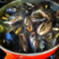mediterannean blue mussels
