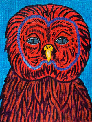 Africa Red Owl_1