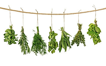 Herbs, herbalist, healing, cure, corona virus, COVID 19, HIV, Immunity, detoxification, cancer, herpes