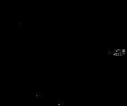 Logo Alicja im Photoland Fotograf Koblen