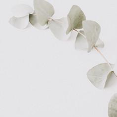 Liebe-im-Licht-Hochzeitsfotografie-Flora