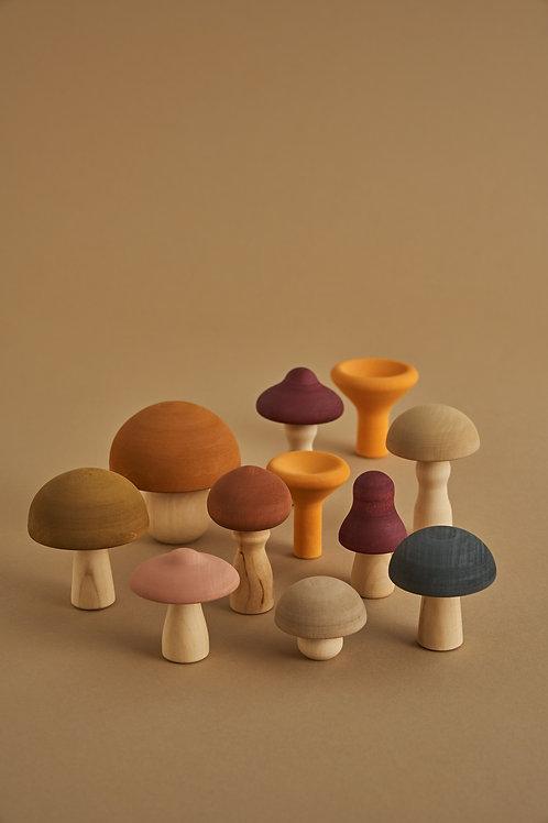 Raduga Grez | Mushrooms