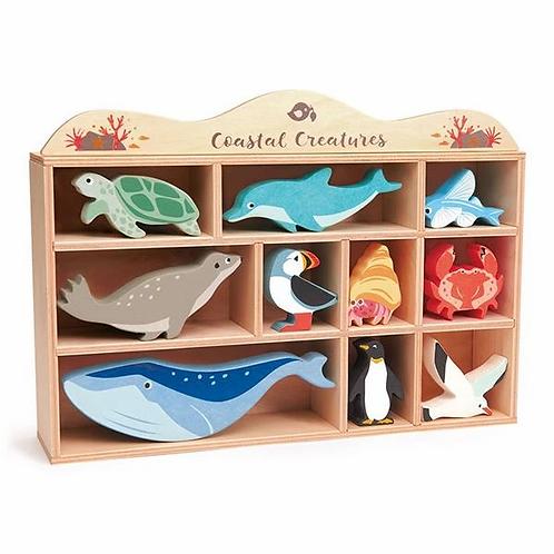 Tender Leaf | Coastal Shelf Set