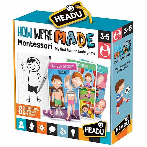 Headu   Montessori How We Are Made
