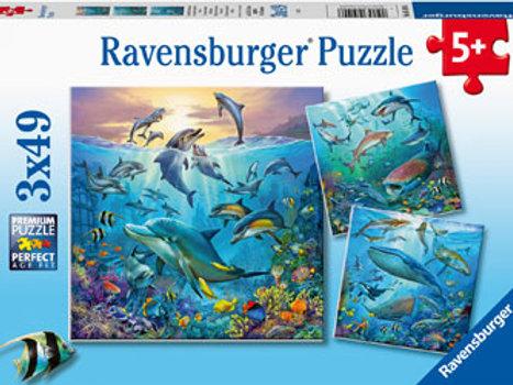 Ravensburger   Ocean Life 49 Piece
