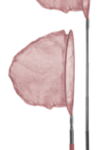 Scrunch Net (Dusty Rose)