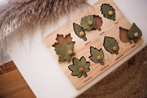 Qtoys | Montessori Leaf Puzzle