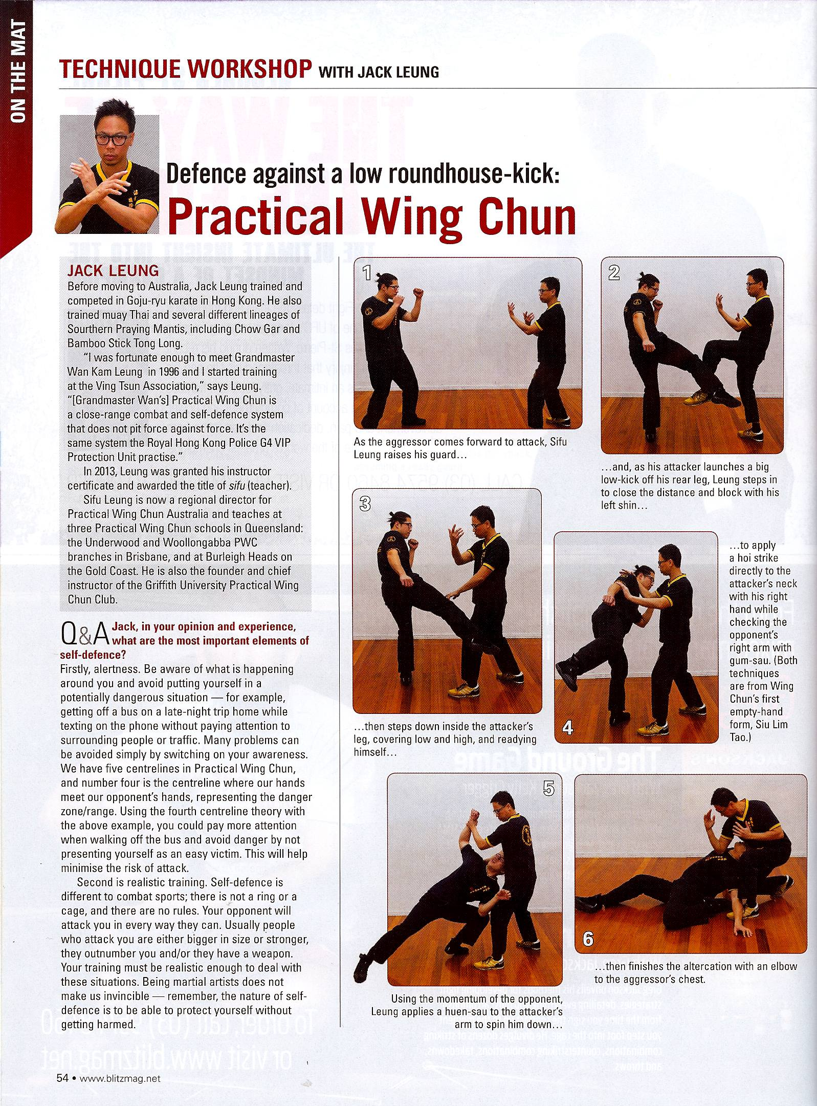 For wing pdf beginners techniques chun