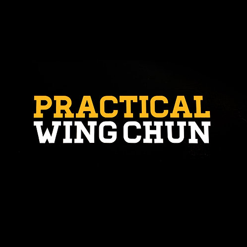 UV Car Sticker - Practical Wing Chun