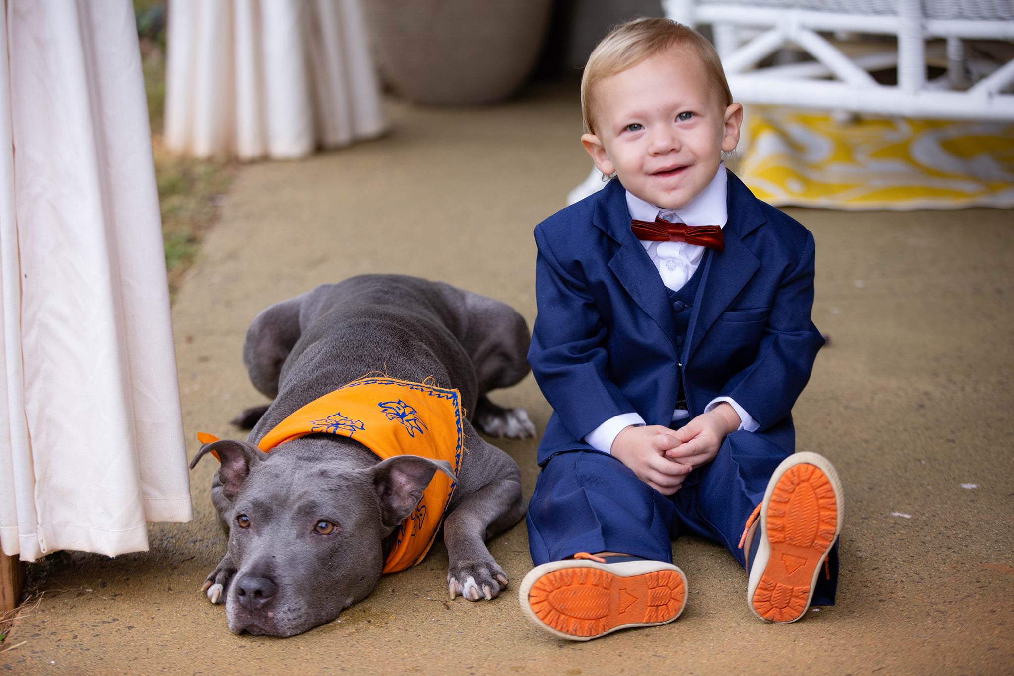 Flower Dog & Ring Bearer
