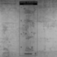 ADIDAS-WALL-GRAPHICS-8.png
