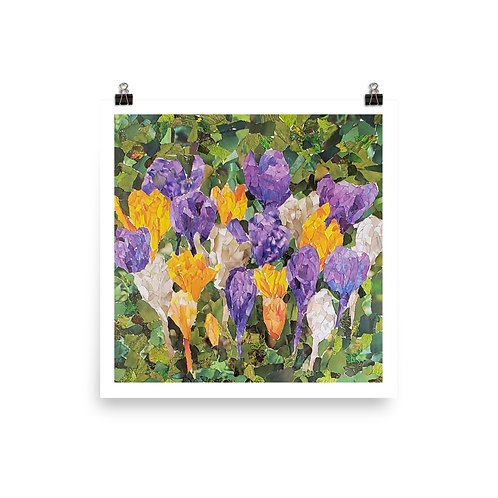 Crocuses - Spring Flower Collection - Art Print