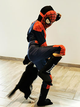 2 - Spiderman en mauvaise posture.jpg