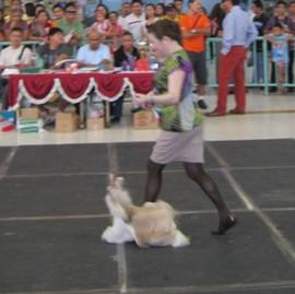 show20113.JPG