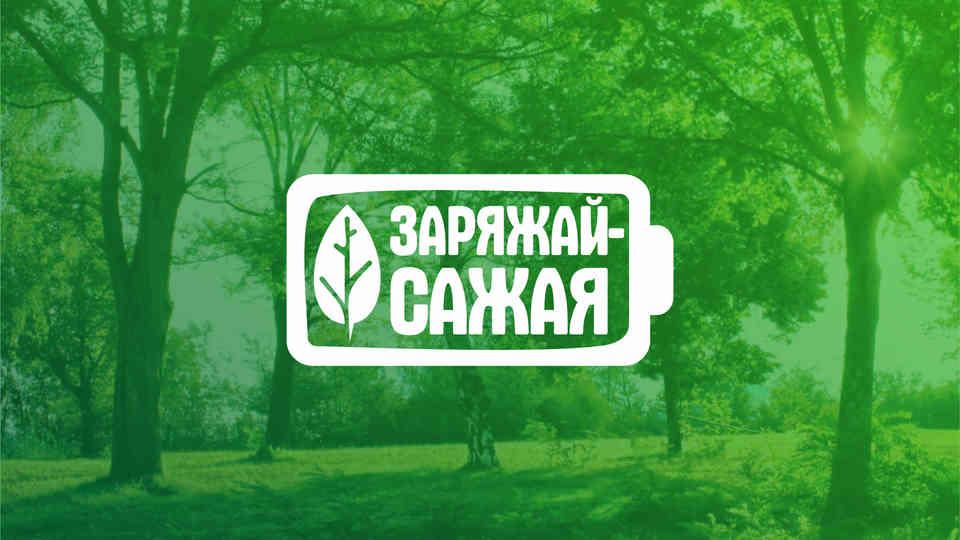 деревья заряжай сажая.jpg