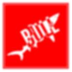 Bull Sharks Logo.jpg