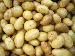 VIDEO: Le patate non sono verdure!