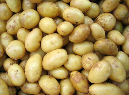 PepsiCo Slaps Small Scale Potato Farmer With Trivial Lawsuit