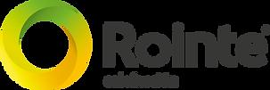 ROINTE (Industrias Royal Termic, S.A.)