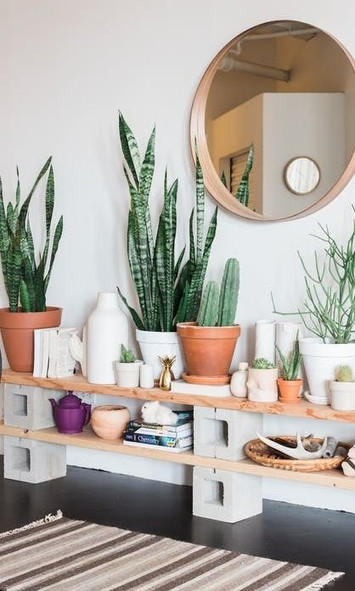 Essential tips for a natural, toxin free home