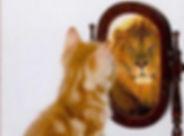 kitten-lion-mirror.jpg