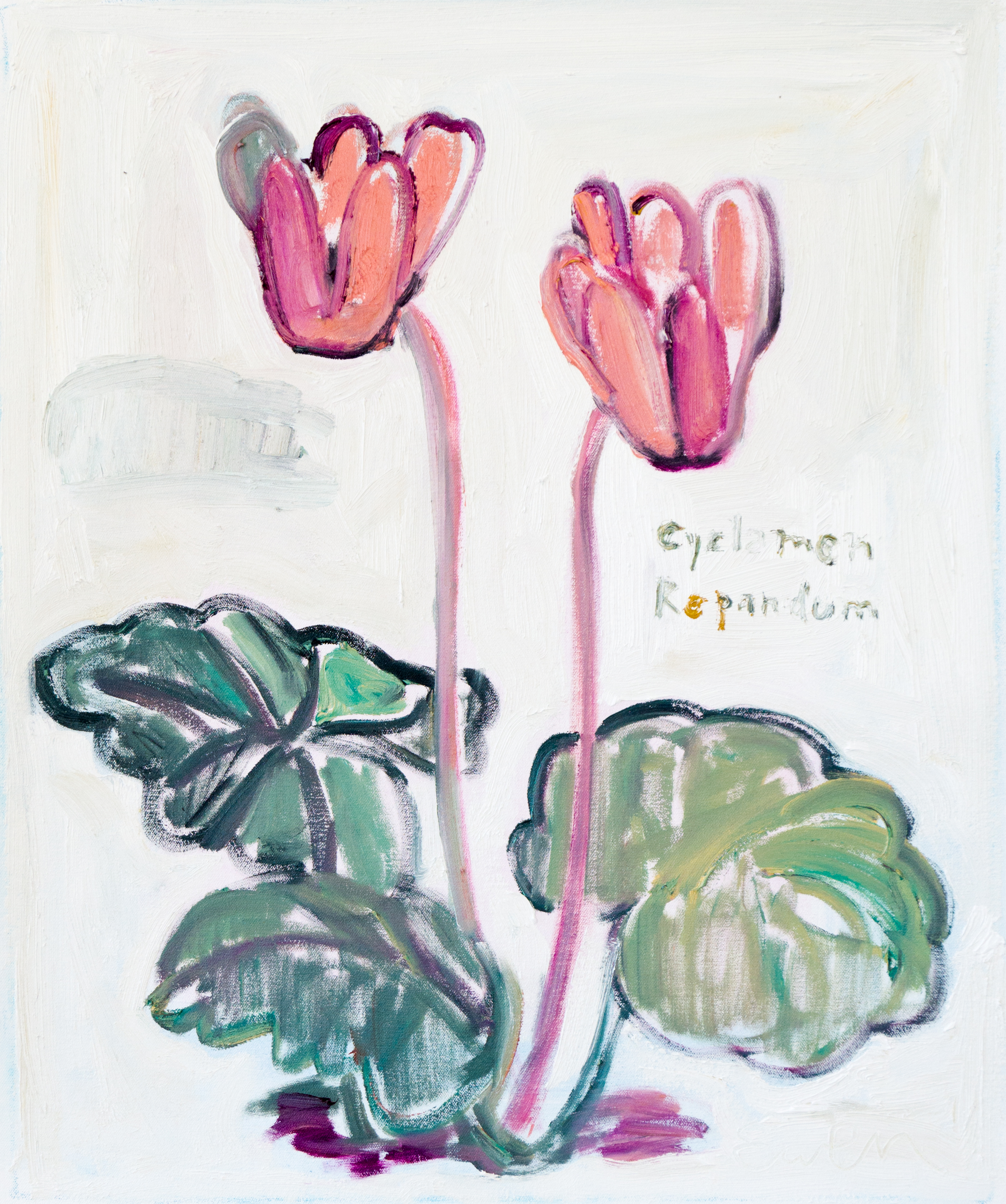 STRANGE FLOWERS FOR DARK TIMES