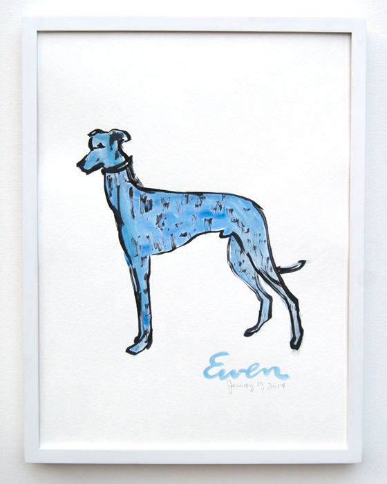 Greyhound Blue