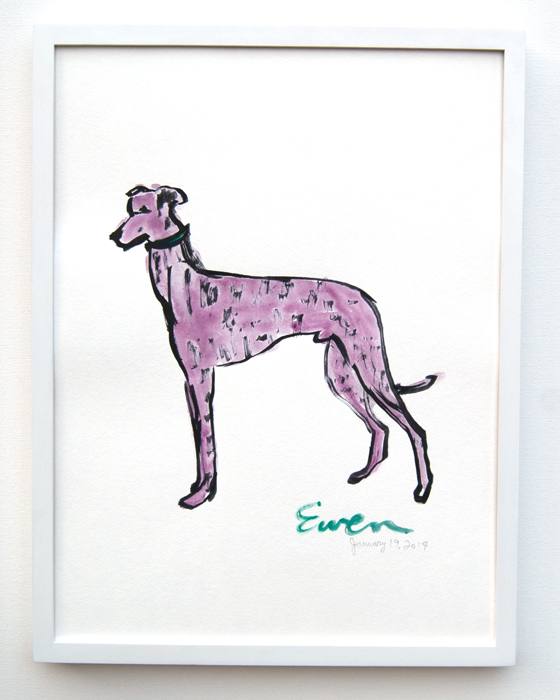 Greyhound Pink