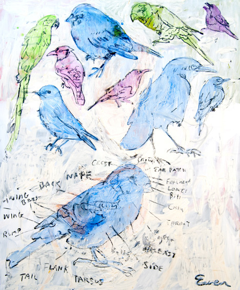 THE PARTS OF A BIRD