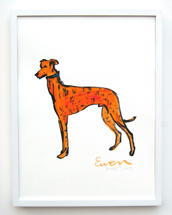 Greyhound Orange