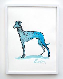 Greyhound LtBlue