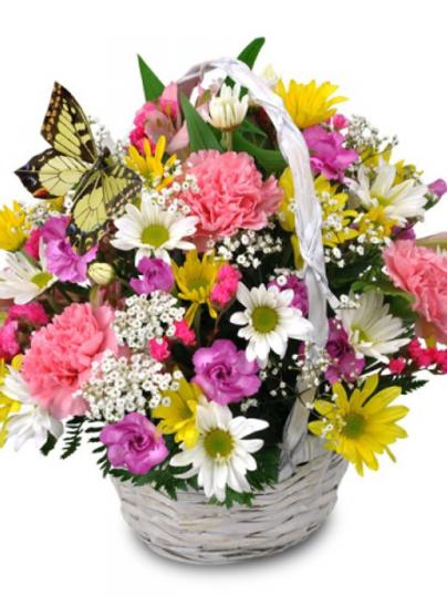Smiles & Butterflies Basket