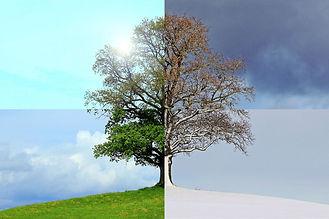 seasons-of-the-year-1127760.jpg