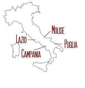 overzicht regio's.jpeg