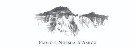 logo damico.jpg