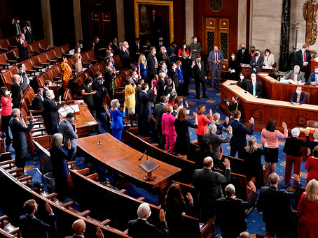Breve radiografía del nuevo congreso estadounidense