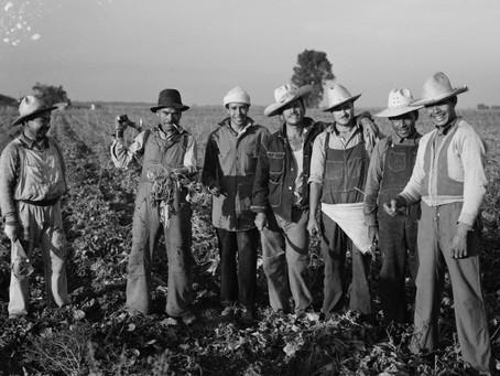 Programa Bracero: una perspectiva desde la protección y asistencia consular mexicana